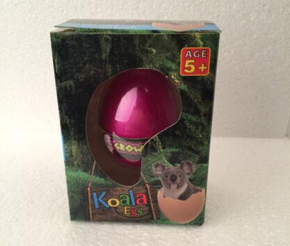 Magic egg koala