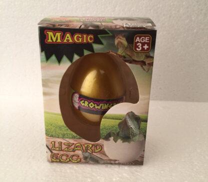 Magic egg lizard